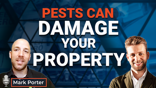 Ep.12 Pests can damage your property