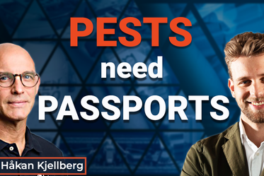 Ep.33 Pests need Passports
